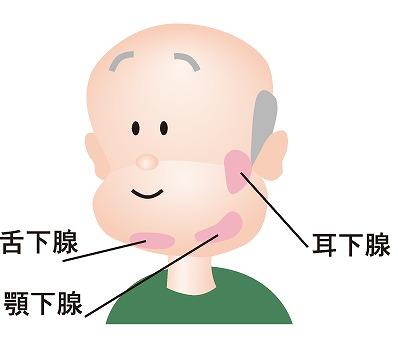 唾液腺疾患とは?